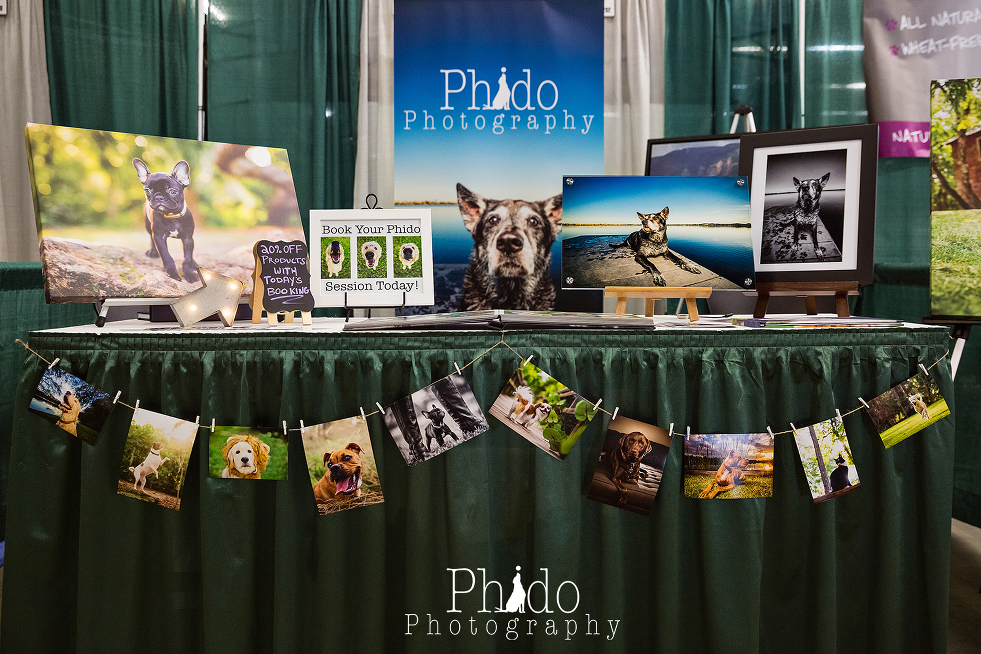 Portland Oregon Pet Photography Dog Puppy Indoor Best Pet Photographer lifestyle natural nature art artistic framed canvas album book animal color rescue Pet Expo