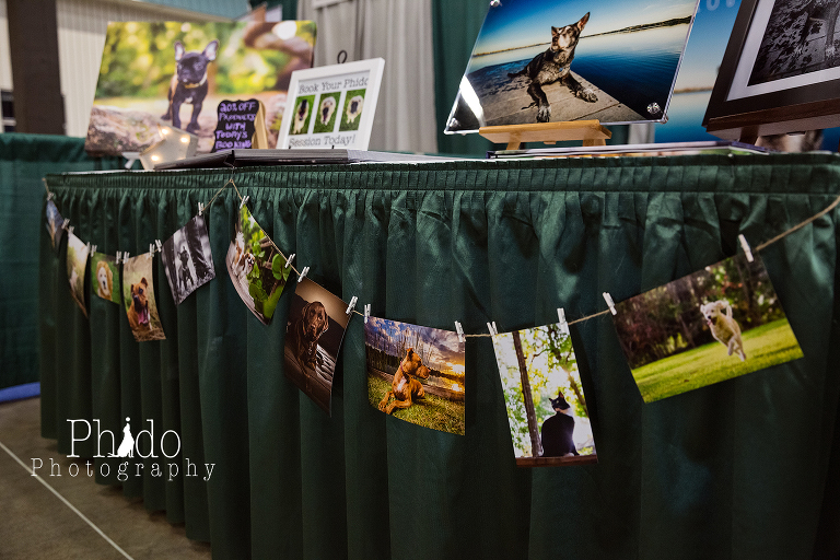 Portland Oregon Pet Photography Dog Puppy Indoor Best Pet Photographer lifestyle natural nature art artistic framed canvas album book animal color rescue Pet Expo